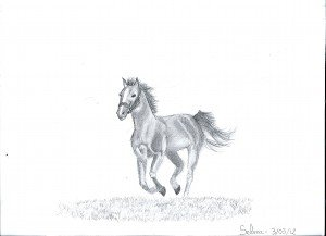 Le cheval de guerre dans Clara COrnélia dessinselma0002-300x217